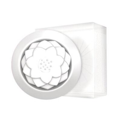 Hideg párologtató fehér lótusz virág