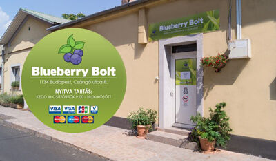 Blueberry Bolt